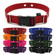 1 Wide Replacement Dog Collar For Invisible Fence Microlite Receiver Collar Ebay