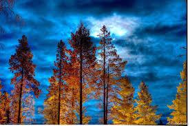 صور الطبيعة الخلابة 2020 أجمل صور خلفيات للطبيعة لسطح المكتب Hd