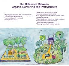 difference between organic gardening