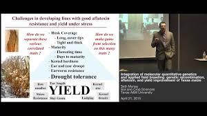 Seth Murray - Molecular quantitative genetics and applied field breeding:  improvement of Texas maize - YouTube