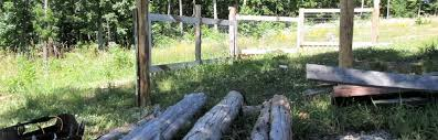 5 Goat Fencing Options And Details To Consider Insteading