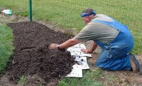 preparing weed free raised planting beds