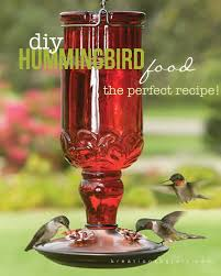organic hummingbird food iamjulieb