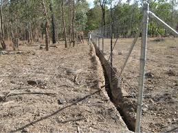 As A Dog Proof Fence Home Ideas For Your Home