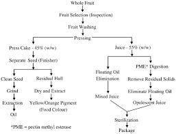 sea buckthorn berries a potential