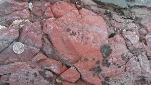 Resultado de imagen de Los microorganismos fósiles más antiguos fueron encontrados en los sedimentos de Barberton, en África del Sur, y de Pilbara