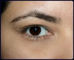 l oreal power volume collagen mascara