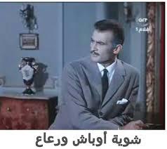 حفنة من الرعاع عرر وجرابيع Funny Arabic Quotes Funny Qoutes