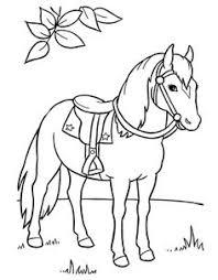106 Beste Afbeeldingen Van Paarden Paarden Paard Knutselen En