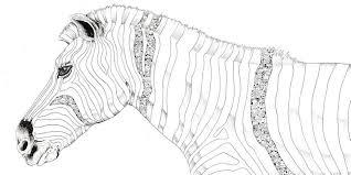 Kerby Rosanes Zebra Animorphia Kleurplaten Line Art En