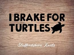 I Brake For Turtles Permanent Decal Sticker Decals Transfer Paper Decals Stickers