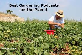 gardening podcasts you must follow in 2020