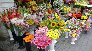 fort worth flower delivery same day
