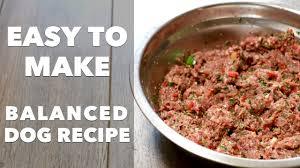 homemade dog food recipe you