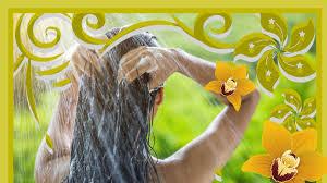 Rahua Organic Shampoo for Shiny Hair - OrganicMakeup Pro - Medium