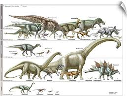Amazon Com Canvas On Demand Timeline Of Dinosaurs Wall Decal 30 X23 Home Kitchen