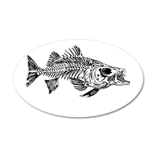 Striped Bass Skeleton 20x12 Oval Wall Decal By Crustyolddiver Cafepress