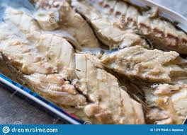 Canned Mackerel Fillets In Tin Stock ...