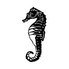Seahorse Detailed Window Vinyl Decal Sticker