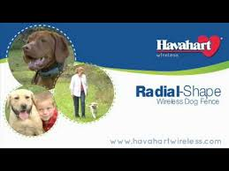 Radial Shape Wireless Dog Fence With 400 Foot Roaming Area Youtube