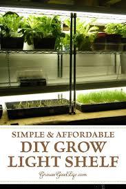 light system for starting seeds indoors