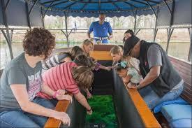 aquarena springs glass bottom boat