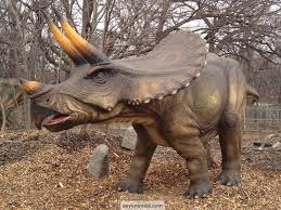 wallpaper triceratops images