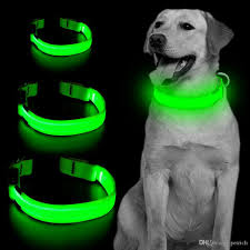 2020 Led Dog Collar Safety Adjustable Nylon Pet Collar With Metal Buckle High Visibility At Night Walks For Dogs Reflective Light Up Collars From Petrich 1 31 Dhgate Com