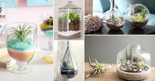 53 diy terrarium ideas that will blow
