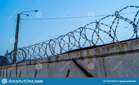 Barbed Wire On The Fence For Security Stock Photo Image Of Agriculture Borscht 152415272