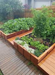 raised bed vegetable garden country