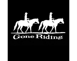 Horse Automotive Decals And Stickers