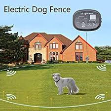 20 Best Invisible Wireless Electric Dog Fences Of 2020 Dog N Dogs