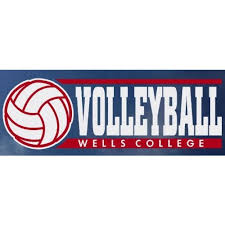 Wells College Volleyball Exterior Window Decal By Cdi Sports Decals Sports