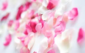 خلفيات وردي صور جميله بينك كلمات جميلة