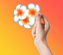 Plumeria Sticker Decal Personalize And Stylize Your Etsy