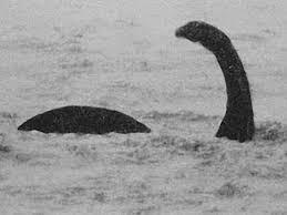 """Картинки по запросу """"лохнесское чудовище на пляже"""""""