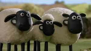 Những Chú Cừu Thông Minh Tập 8 30 phút - YouTube