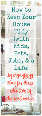 Real World Organizing How To Keep Your House Tidy With Kids Pets Jobs A Life The Happy Housie