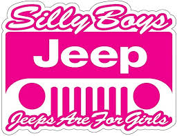 Amazon Com Silly Boys 4 X 4s Are For Girls 4 To 14 Full Color Pink Vinyl Decal Sticker Pink 6 X 4 6 Kitchen Dining