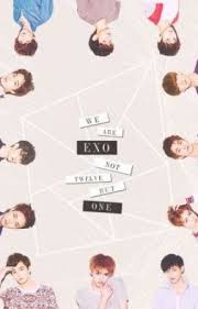 all about exo random exo phrases quotes wattpad