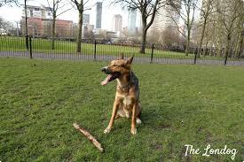 East London Dog Areas Sir John Mcdougalls Gardens The Londog