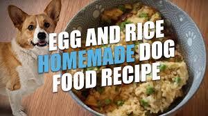 egg and rice homemade dog food recipe