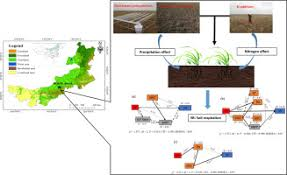 Soil respiration response to alterations in precipitation and nitrogen  addition in a desert steppe in northern China - Sci. Total Environ. - X-MOL