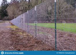 876 Welded Fence Photos Free Royalty Free Stock Photos From Dreamstime