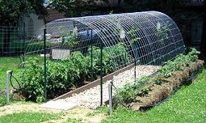 Use Cattle Panels To Build An Arched Trellis Hoop House Dave S Garden