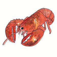 Lobster Watercolor Print Maine Gift ...