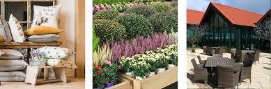 10 cotswold garden centres you should