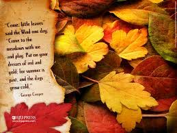 Autumn Poetry | St. Thomas' S.N.S.