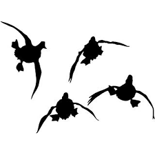 Amazon Com Waterfowl Decals Duck Hunting Decal Four Ducks Duck Flying In The Wild Flying Ducks Decal 5010sw Sports Outdoors